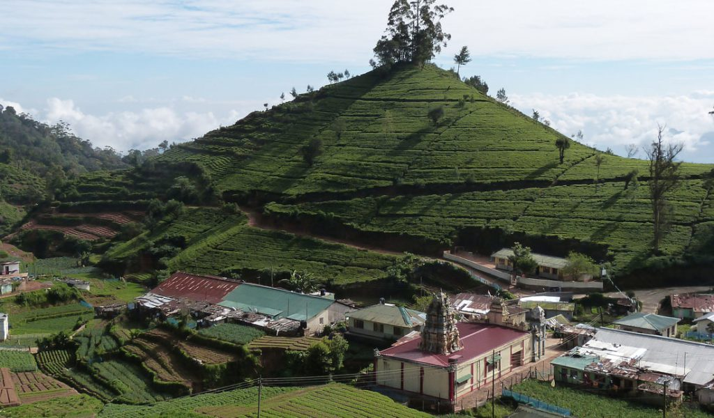 Sri Lanka Usine Plantation Bve Orig 1024x600